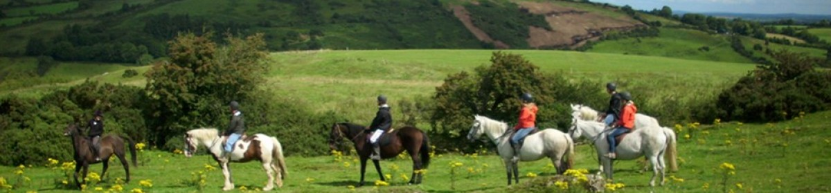 Tipperary Mountains Riding Centre